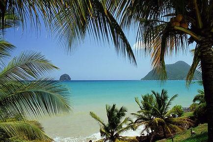 Z - Martinique.jpg