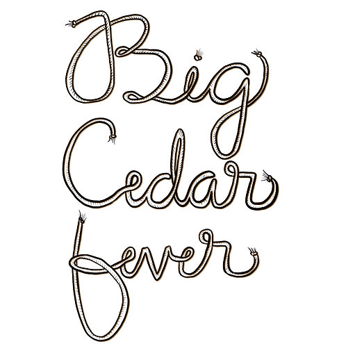 CD- Big Cedar Fever EP