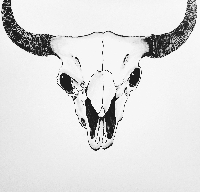 Bison Skull Design