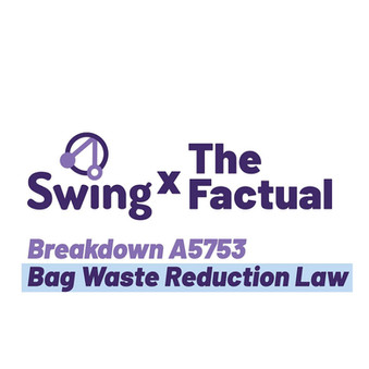 Swing x The Factual Bag Waste Reduction Law