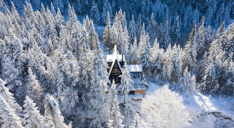 Aura Snow 6.jpg