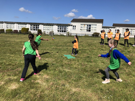 Rounders in the Sun🏏 ☀️