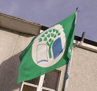 green flag 1.jpg