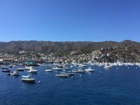 Ein Tagesausflug nach Santa Catalina Island
