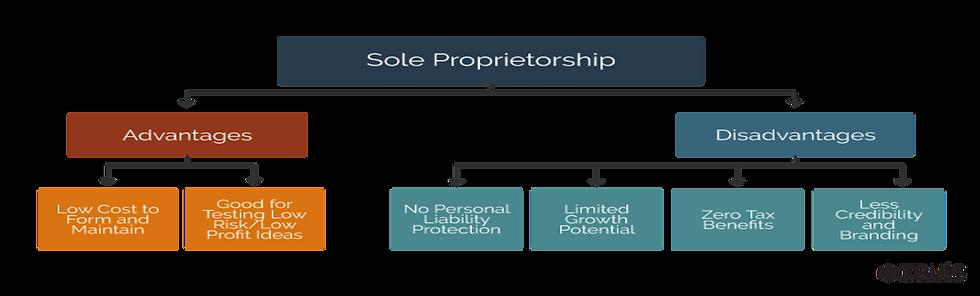 Sole Proprietorship.png