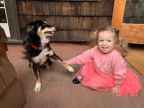 Little girl smiling holding hands with a rescue dog