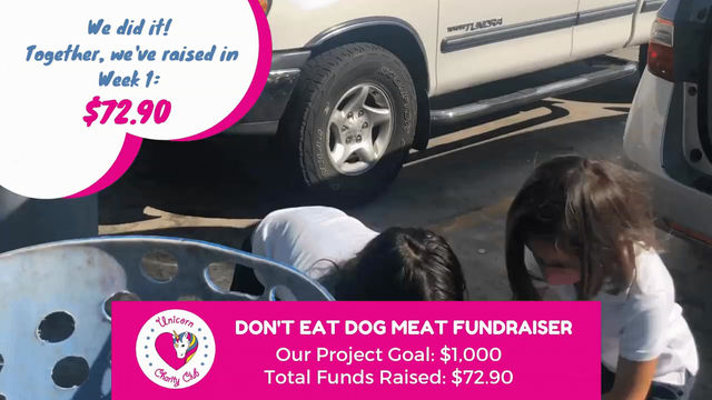 Meet Gemma, a young Duo Duo volunteer dedicated to stopping the dog meat trade