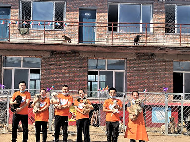 MudanJiang-Compassion-Center-After.jpg
