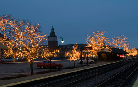 Holiday Trees in the City of Lake Forest
