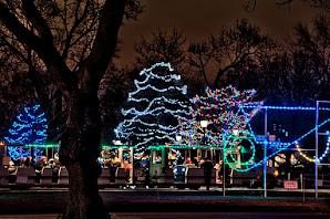 Holiday Trees at the Brookfield Zoo