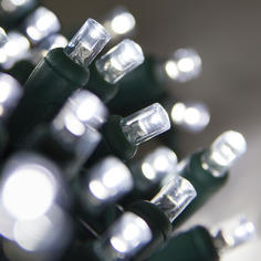 Twinkle Cool White 5MM LED