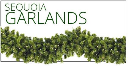 Sequoia Fir Garland