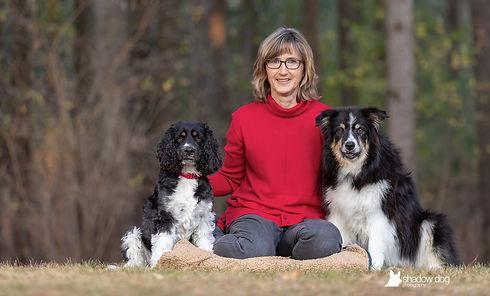 rescue-dogs.jpg