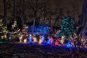 Christmas Light Displays at the Brookfield Zoo