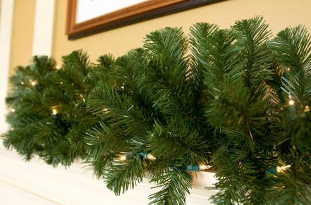 Sequoia Fir Lighted Garland