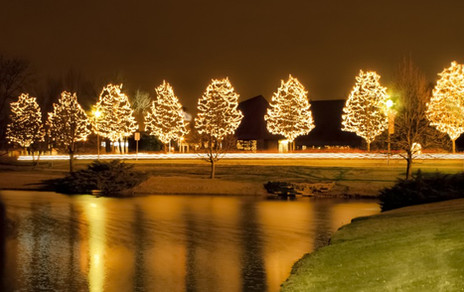 Burr Ridge Downtown Lighted Christmas Trees