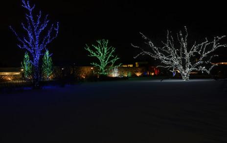 Arboretum_128.jpg