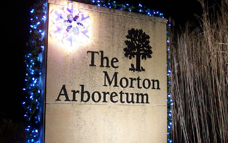 MortonArbor4_7.jpg
