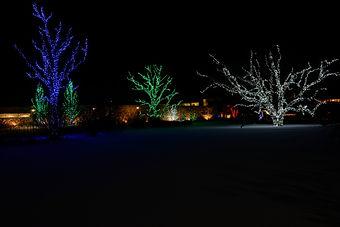 Brookfield Zoo Christmas Light Display