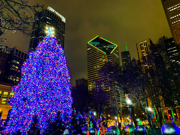 Giant Everst Christmas Tree at Millinium Park Chicago