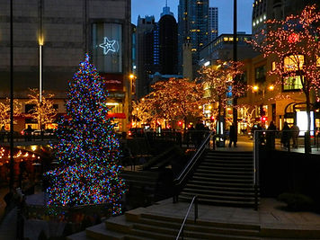 Chicago Downtown Holiday Lights