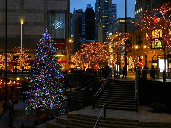 Chicago Holiday Decor