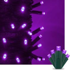 Purple Kringle Traditions 5MM LED