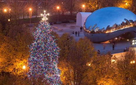 Chicago Christmas Tree 2016