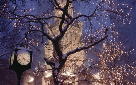 Holiday Lights in Chicago