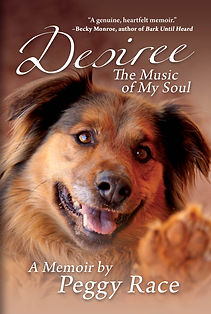 Desire: The Music of My Soul Book Cover