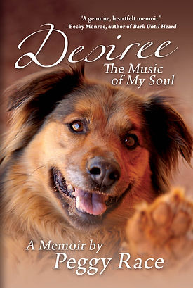 Desire: The Music to My Soul Book Cover