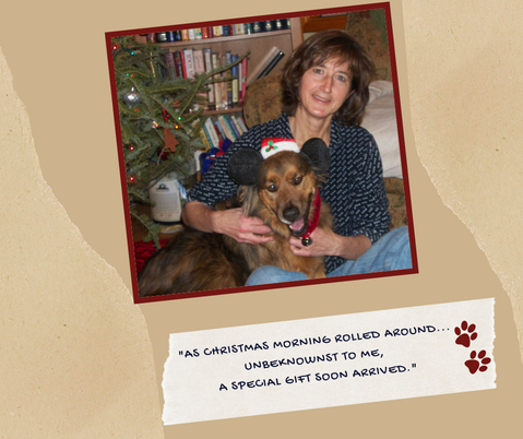 """""""As Christmas morning rolled around… unbeknownst to me, a special gift soon arrived."""""""