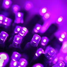 Purple 5MM LED