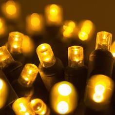Gold 5MM LED