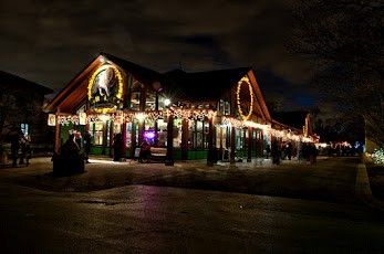 Holiday Decorations at the Brookfield Zoo