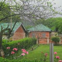 Dagger huts