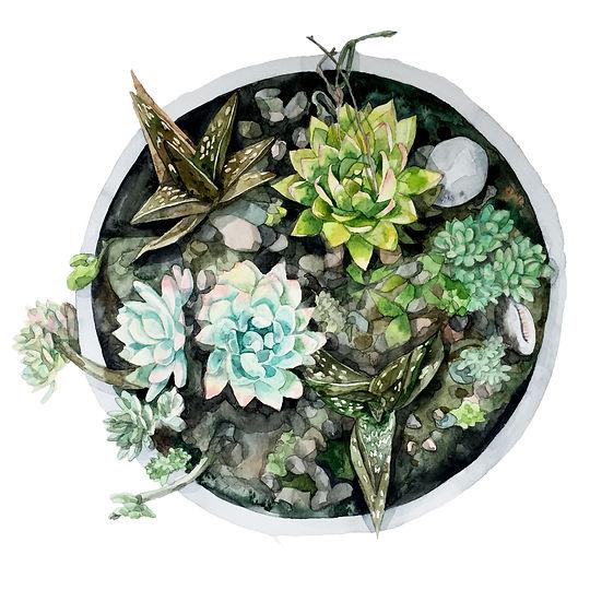watercolour artist, illustrator, london uk, watercolour illustration, freelance illustrator,