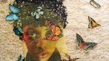 Collage Exhibition
