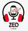 Logo ZED.PNG