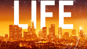 Update - New Edition of High Life