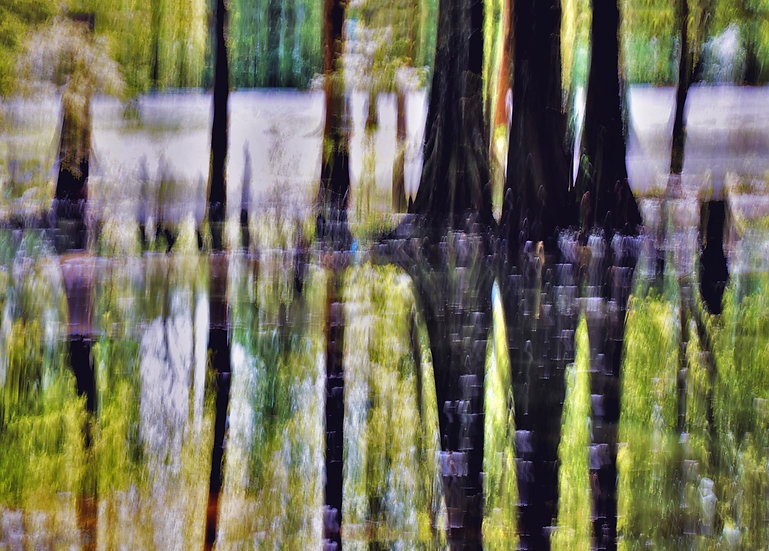 Cypress Sundown