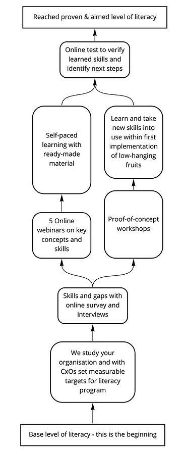 steps-data-literacy.jpg