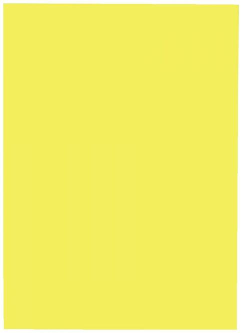 Boîte de 2 400 étiquettes 37x70mm multi-usages jaune fluo