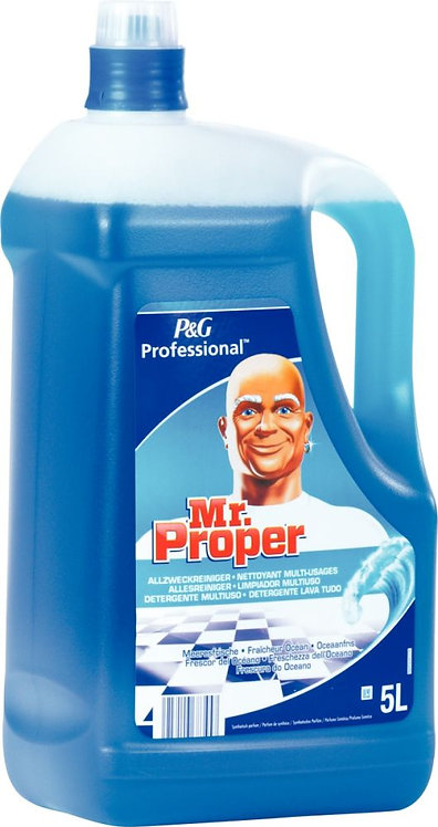 Bidon nettoyant MR PROPRE fraicheur océan 5L