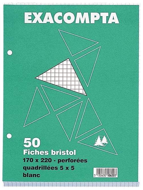 Paquet 50 fiches bristol perforées carte forte 210g blanc quadrillé 5x5, 17x22cm