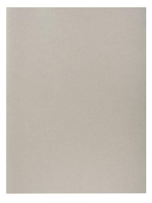 Paquet de 100 chemises 220g FOREVER 250 format 24x32 cm coloris gris