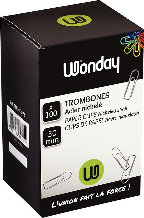 Boîte de 100 trombones 30 mm bout chevron nickelé