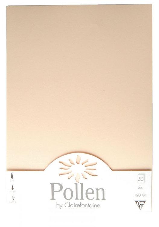 Étui de 50 feuilles Pollen Clairefontaine, format 21x29,7 cm, 120g.  Ivoire