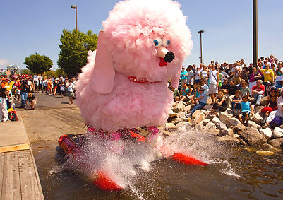 Fifi the pink poodle
