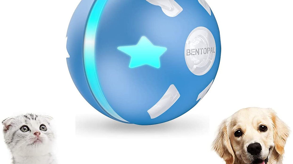 PetDroid Interactive Dog Toy